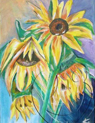 008006 Wilted sunflower