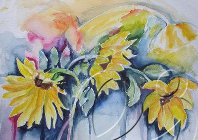 012053 Olgi's sunflower