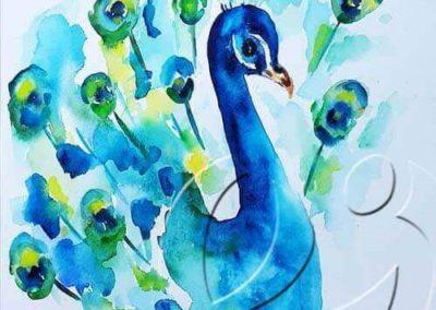 017198 Peacock