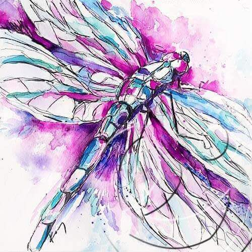 017201Dragonfly