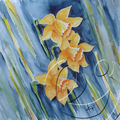 012048 Iby's daffodil