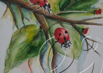 """013072 Katie""""s ladybirds"""