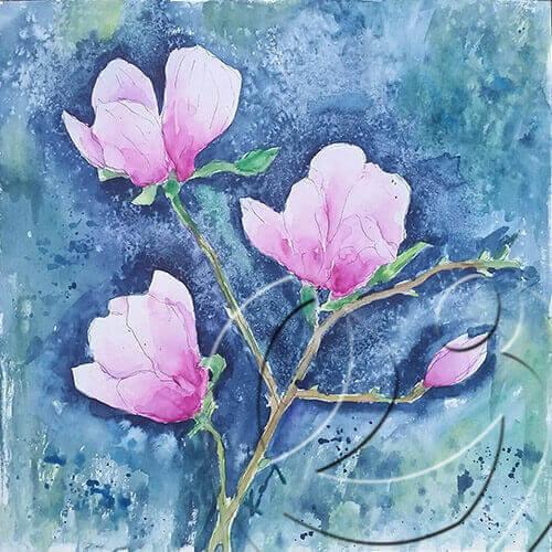 017165 Magnolias