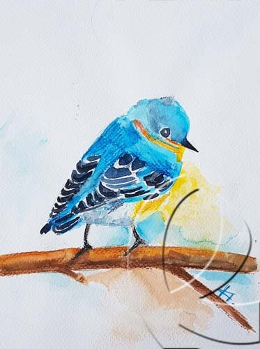 015082 Bluebird