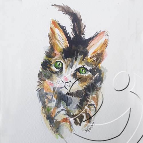 018216 Cat