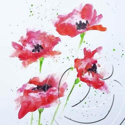 018224 poppies