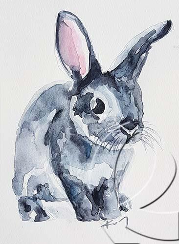 019271 grey bunny
