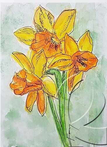 019273 daffodil