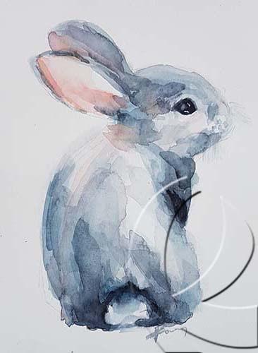 019280 grey bunny back