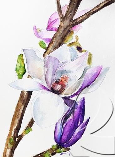019290 magnolia