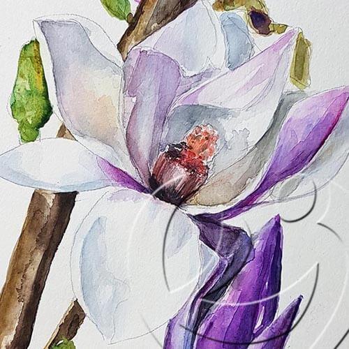 019290 magnolia detail
