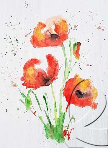 019294 acryl poppy aquarelle style