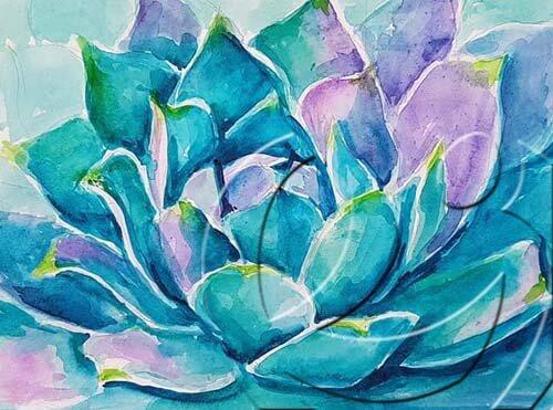 019314 succulent