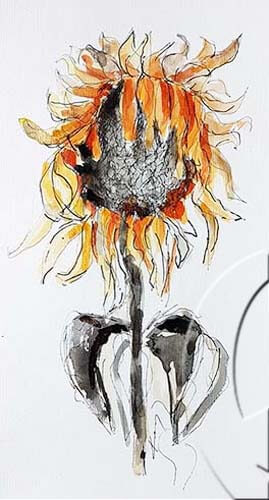 019316 24x40 withered sunflower sw
