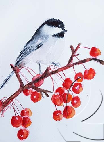 019336 tit and red berry