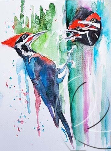 019337 Woodpecker family