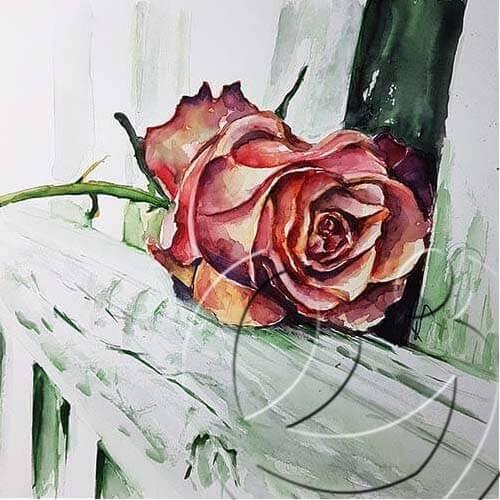 019342 Rose