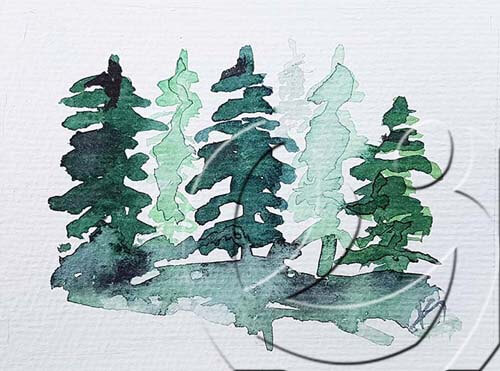 020351green pine trees