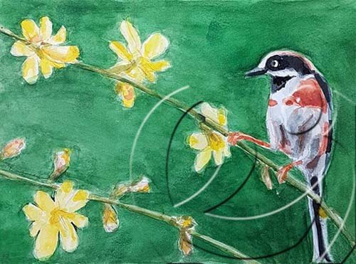 020361 bird and winter jasmine