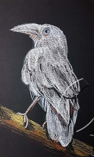 020362 white raven on black paper